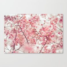 Spring is here. Canvas Print
