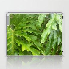 Just greens Laptop & iPad Skin