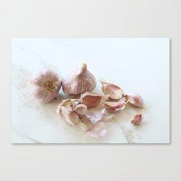 Garlic Canvas Print