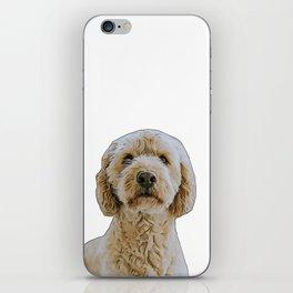 golden doodle iPhone Skin