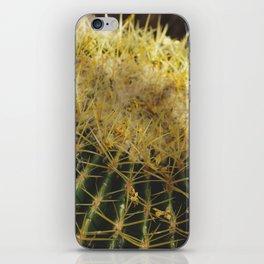 Golden Barrel Cactus iPhone Skin