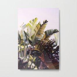 Paradise #1 Metal Print