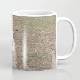 Racing Penny the Yorkipoo Coffee Mug