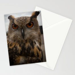 European Eagle Owl Stationery Cards