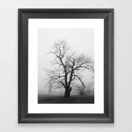 Bare Branches in Winter Fog 2 Framed Art Print