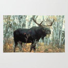 Huge Moose Rug