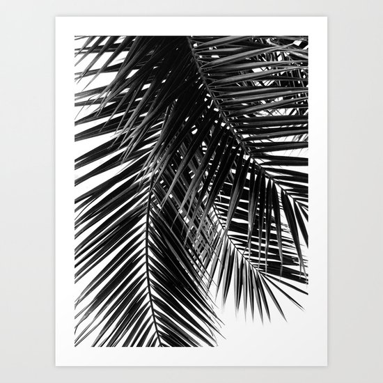 Tropical Vibes | Black and White by jackyd