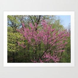 Blooming Woodland Art Print