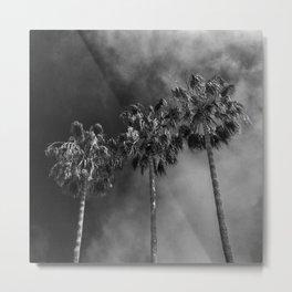 Three Palms B&W Metal Print