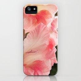 Warmth iPhone Case