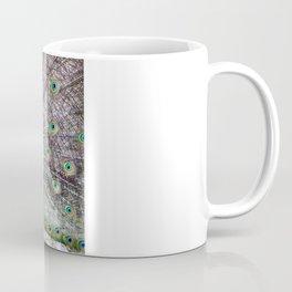 Peacock Display Coffee Mug
