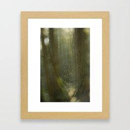 Fairy Glen Framed Art Print