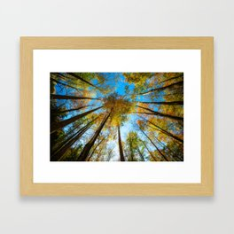 Kaleidoscope - Fall Colors in Trees of Great Smoky Mountains Framed Art Print