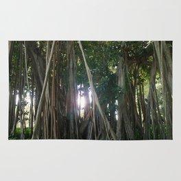 Banyan Trees II - Sarasota, FL Rug