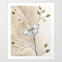 Moth on Branch Art Print