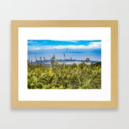 Looking Through Tall Grass and Wildflowers at the Lake on top of Mombacho Volcano, Nicaragua Framed Art Print