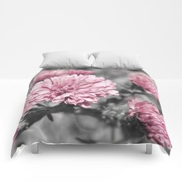 Blushing Gray Comforters