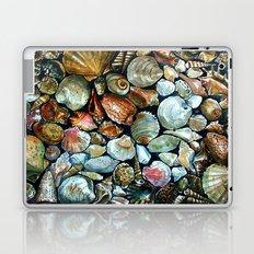 Sea shells  Laptop & iPad Skin