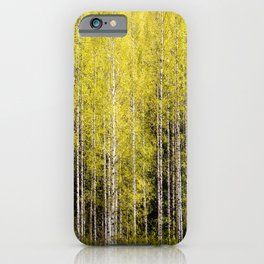 Lovely spring atmosphere - vibrant green leaves on the trees - beautiful birch grove iPhone Case