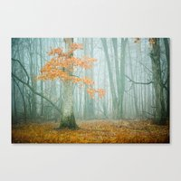 woods Canvas Prints featuring Autumn Woods by Olivia Joy StClaire