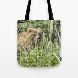 Bear Cub with Wet Face Tote Bag