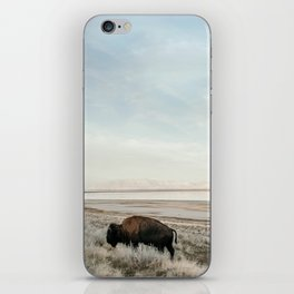 Bison of Antelope ISland iPhone Skin