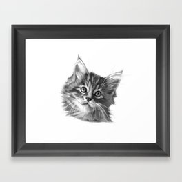 Maine Coon kitten G114 Framed Art Print