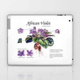 African Violet Botanical Illustration  Laptop & iPad Skin