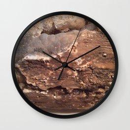Petrified wood Wall Clock