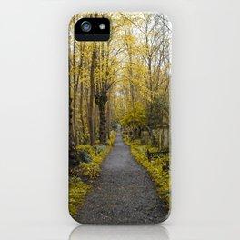 A walk in Highgate iPhone Case