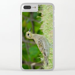 Pacific Golden Plover Clear iPhone Case