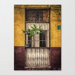 Casco Viejo Door Canvas Print
