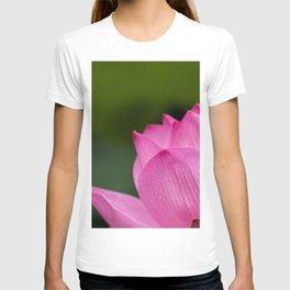 Lotus Pink Nature T-shirt