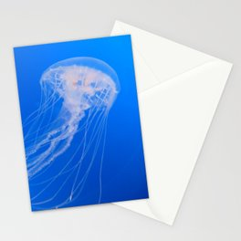 Meduse Experience Stationery Cards