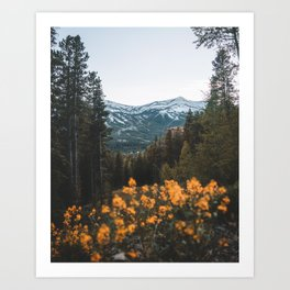 Breckenridge Mountains Art Print