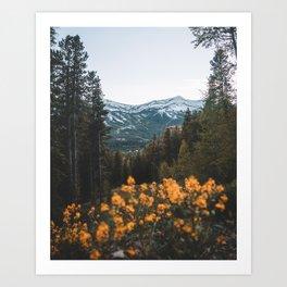Breckenridge Mountains Art Print