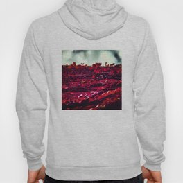 Red Wall Hoody
