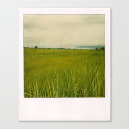 Adjumani Field Canvas Print