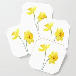 two botanical yellow daffodils watercolor Coaster