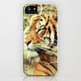 Blurred stripes iPhone Case