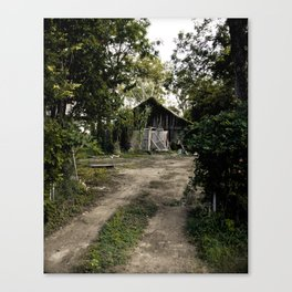 Shed in the Woods Canvas Print