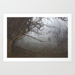 horse in the fog pt 2 Art Print