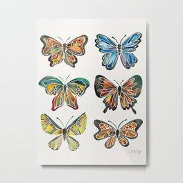 Butterfly Specimens Metal Print