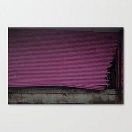 Pink Gate, After Sandy Canvas Print