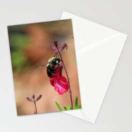Busy as a Bee Stationery Cards