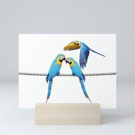 macaw Bird sitting on rope & flying Mini Art Print