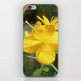 Celandine Flower Closeup iPhone Skin