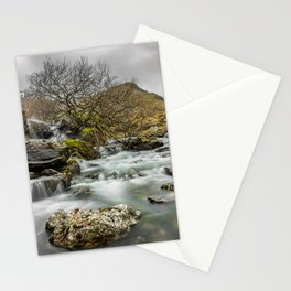 Lone Tree On The River Stationery Cards