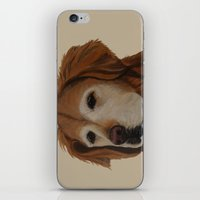 shadow iPhone & iPod Skins featuring Shadow by Ginny M