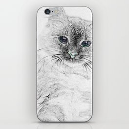 Siberian Kitty Cat Laying on the Marble Slab iPhone Skin